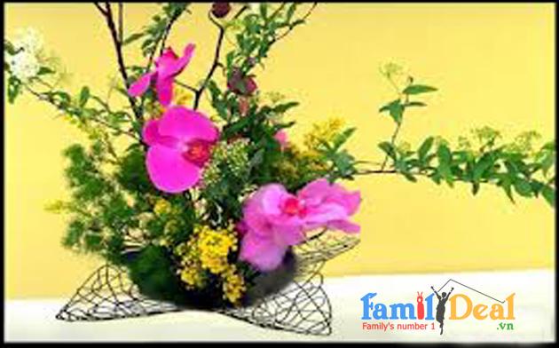 Đĩa trưng bày trái cây, cắm hoa hình sao